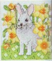 Белый крольченок