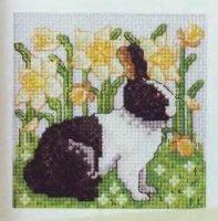 Бело - черный кролик