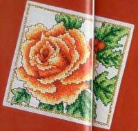 Роза желтая роза на веере красная роза