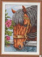 Лошадь вариант 3