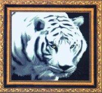 Белый тигр вариант 1