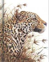 Леопард вариант 3