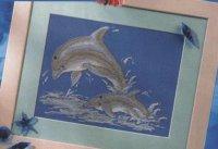 Дельфины вариант 2
