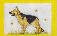 Немецкая овчарка, открытка