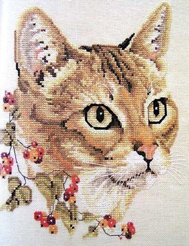 схемы вышивки кошки