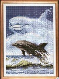 Игривый дельфин