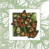 Бабочки вариант 1