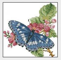 Синяя бабочка на шиповнике