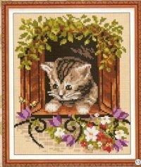 Котенок в окне