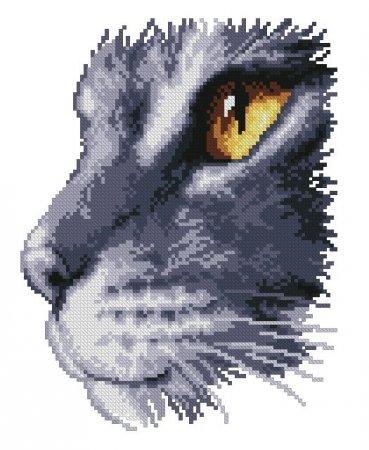 Мордочка серой кошки