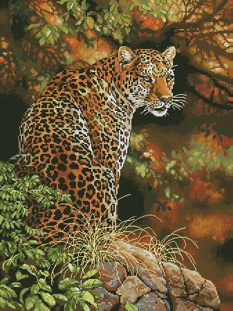 Леопард вариант 4