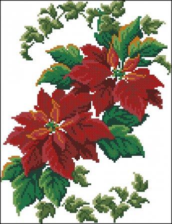 Красная Пуансетия