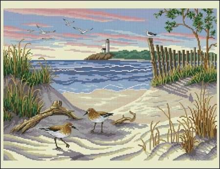 Чайки на песке