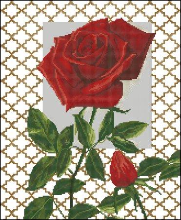 Красная роза с бутоном