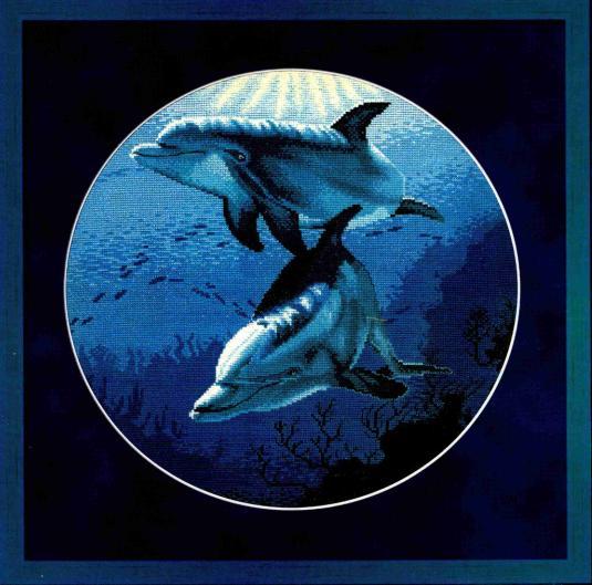 Дельфины вариант 1