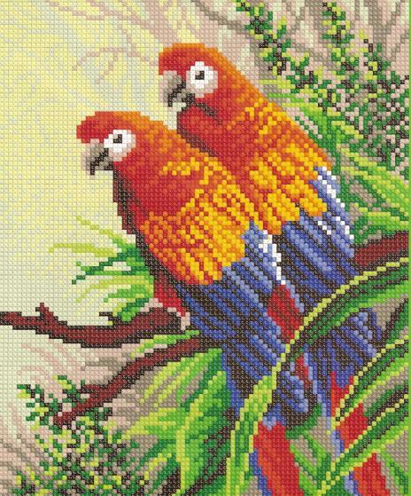 Павлины Попугаи