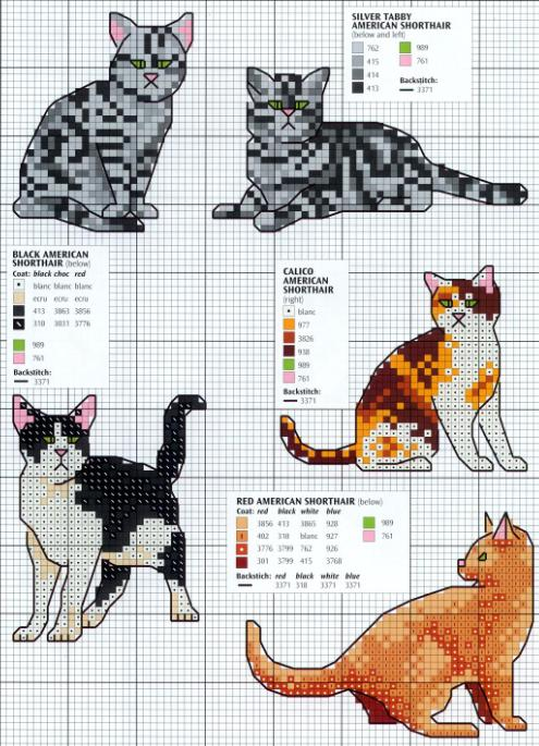 Котята вариант 1 схема вышивки