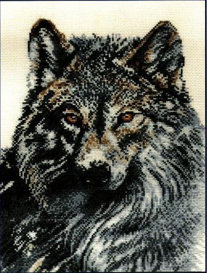Луна Волк вариант 1